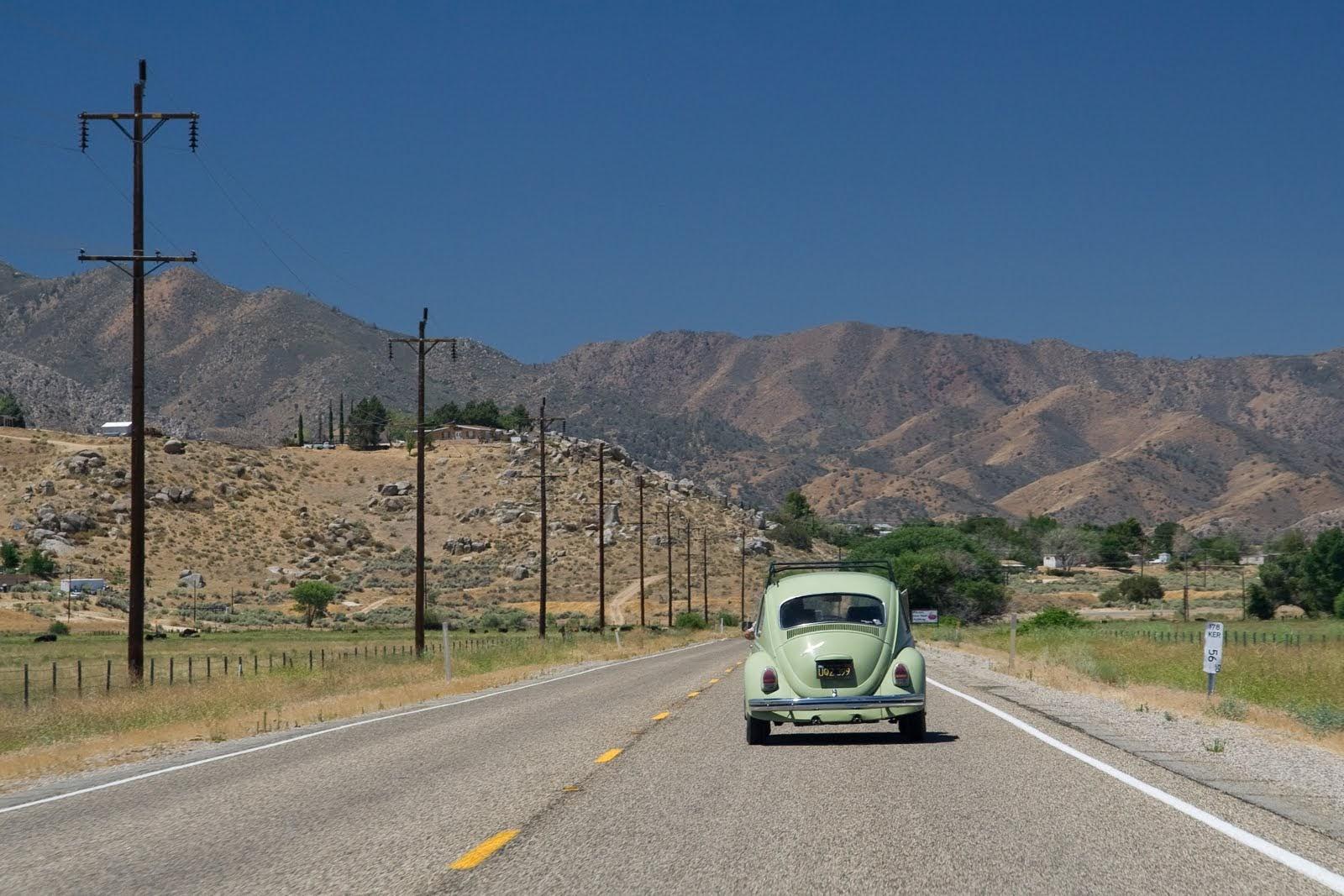 Freeway bug